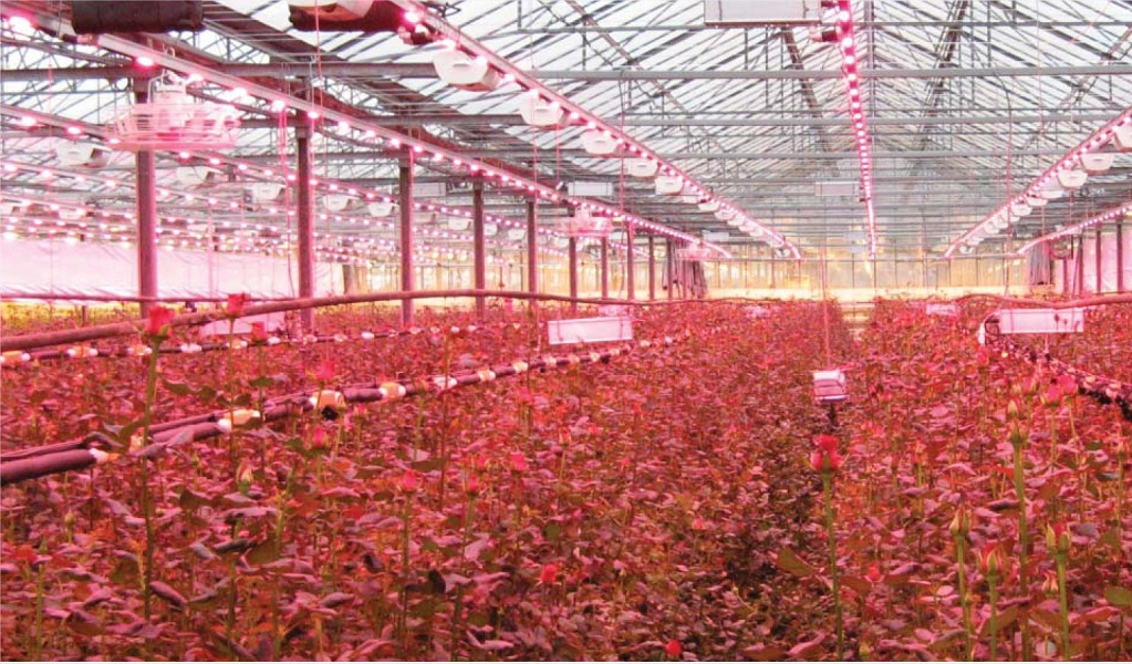 Impressive Technological Advancements in the Agriculture Industry