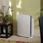 Smart Devices that Rid Your Home of Contaminants